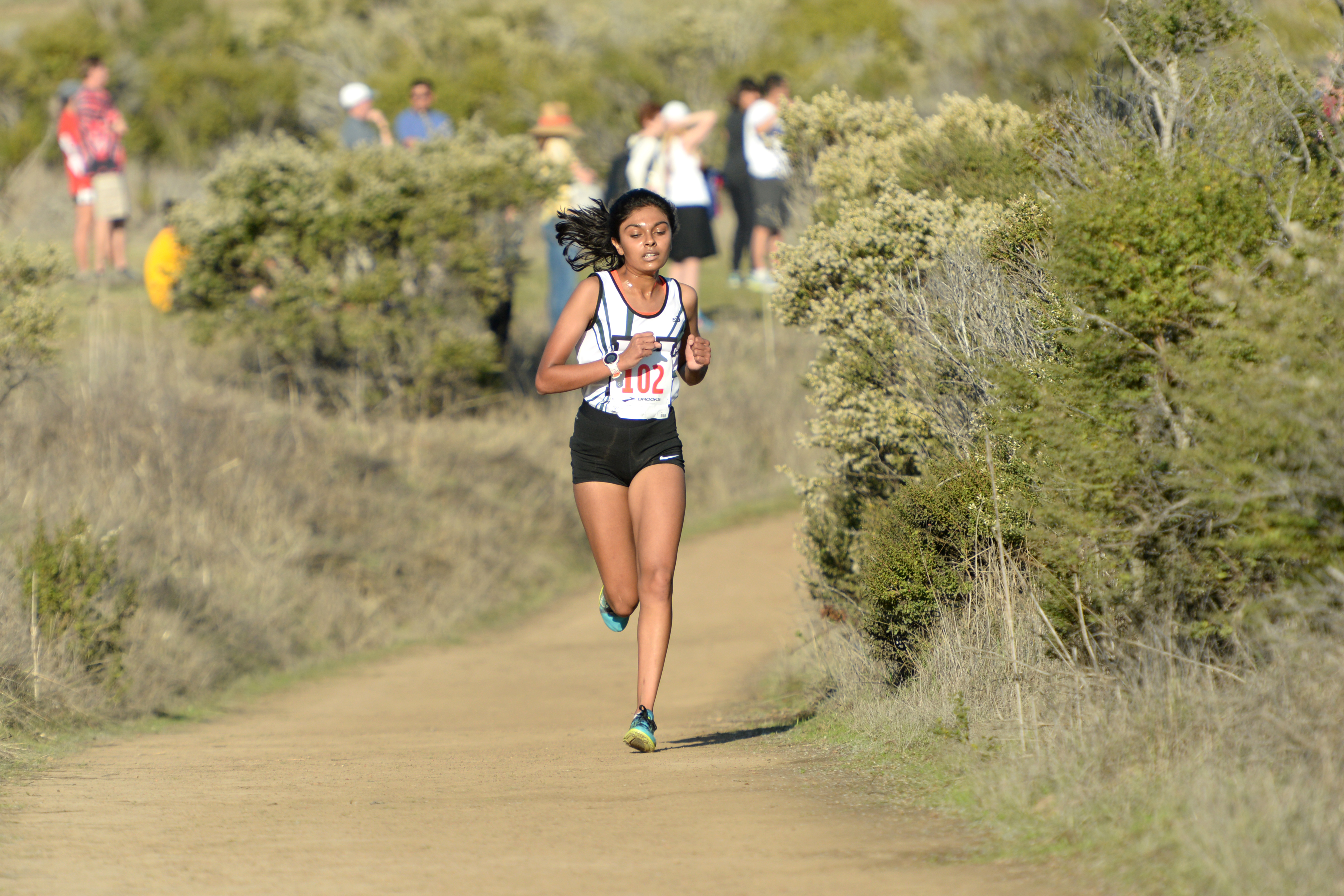Cross country, football and girls tennis compete in playoffs